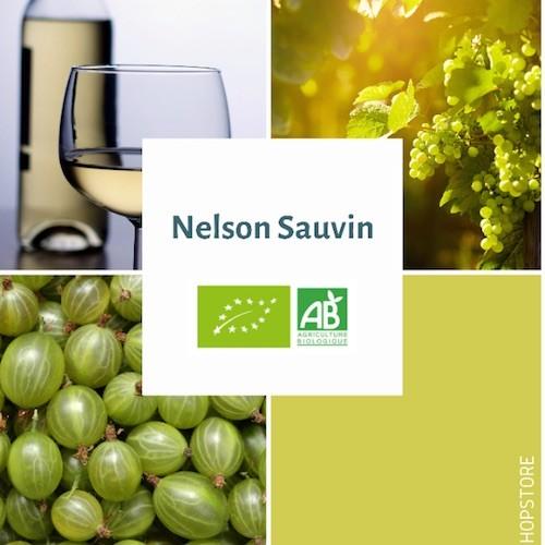 Houblon bio Nelson Sauvin