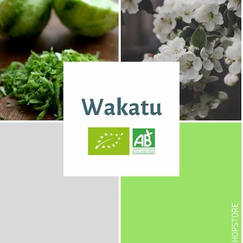 Houblon bio Wakatu