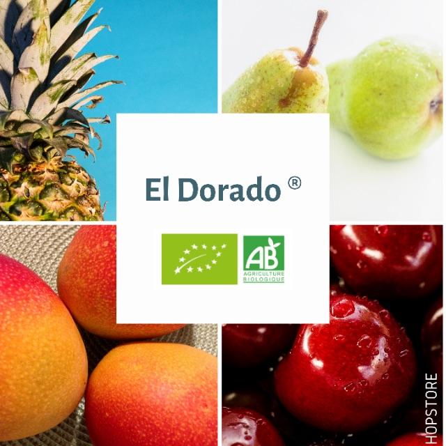 Houblon bio El Dorado
