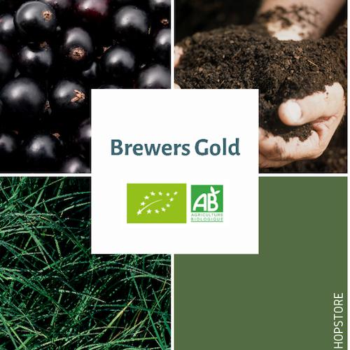 Houblon bio Brewers Gold