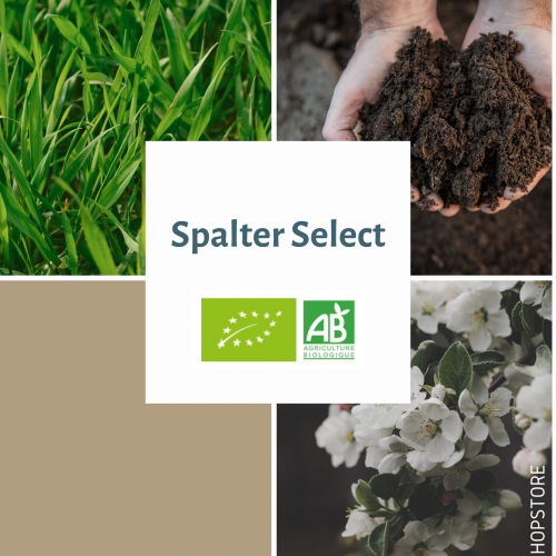 SPALTER SELECT · BIO · AUT · AA: 6,2% · 2019 (Copie)